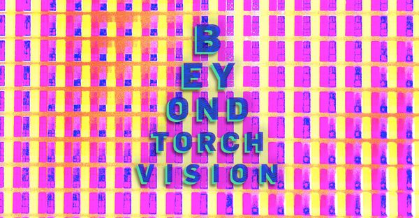Going beyond torchvision models